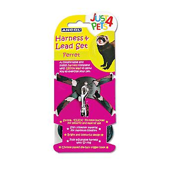 Ancol Pet Products Just 4 Pets Ferret Harness And Lead Set