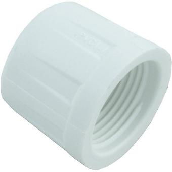 LASCO 448-007 Threaded Cap 3/4""