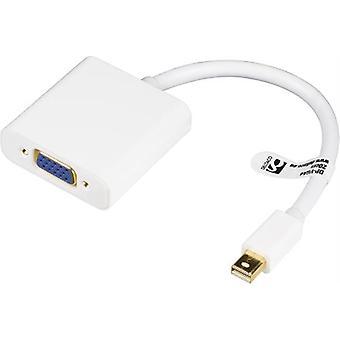 mini DisplayPort à VGA adaptateur 0.2m