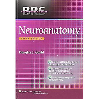 BRS neuroanatomi