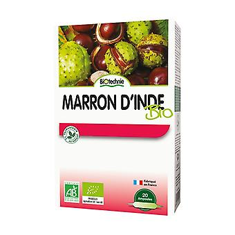 Maroon d'apos;India Bio 20 bulbs