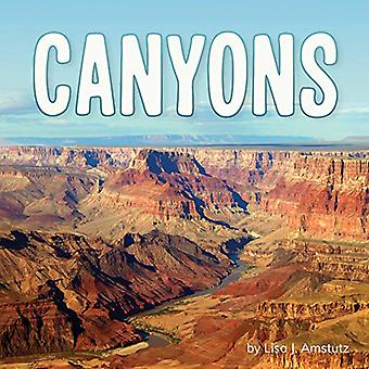 Canyons (Earth's Landforms)