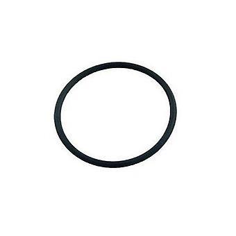 Pentair 86006900 schoon & duidelijk Plus FNS Plus schot O-Ring