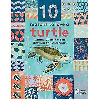 10 skäl att älska en... Sköldpadda (10 skäl att älska en...)