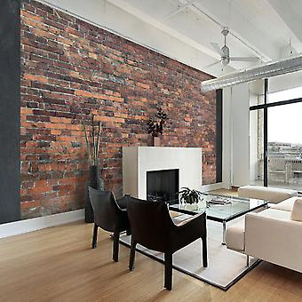 Artgeist Wallpaper Vintage Wall Red Brick