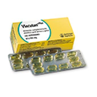 Boehringer Ingelheim Viacutan Plus 550 Mg Caps 4X10 (Dogs , Supplements)