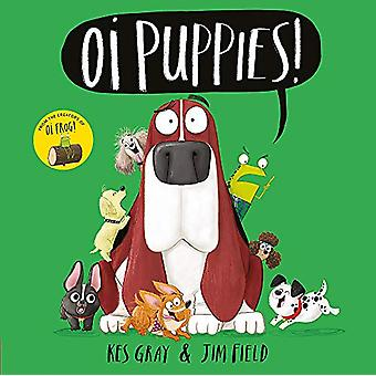 Oi Puppies! by Kes Gray - 9781444937350 Book