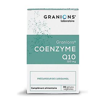 Coenzyme Q10 30 capsules