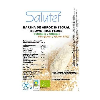 Brown rice flour ECO 300 g of powder