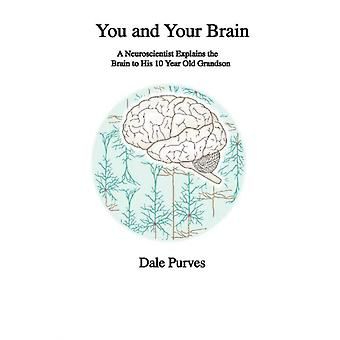You and Your Brain  A Neuroscientist Explains the Brain to His 10 Year Old Grandson by Dale Purves
