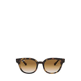 راي بان RB4324 ضوء هافانا النظارات الشمسية للجنسين