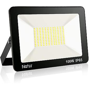 100W LED Strahler Außen Superhell LED Fluter 6000K LED Scheiwerfer IP65 Wasserdicht LED Flutlicht