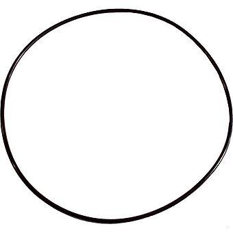 Pentair 071445 WhisperFlo Pump Seal Plate O-Ring