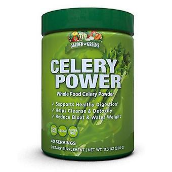 Garden Greens Celery Powder, 0, 14 Oz
