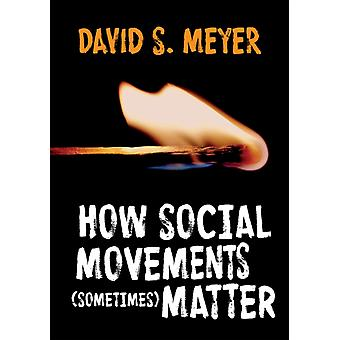 How Social Movements Sometimes Matter by David S. Meyer