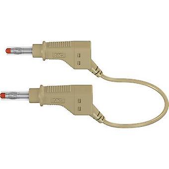 Stäubli XZG425/SIL سلامة اختبار الرصاص [الموز جاك 4 ملم - الموز جاك 4 ملم] 1.00 م براون