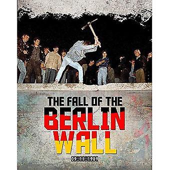 Nedgången av Berlinmuren
