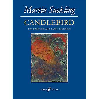 Candlebird by Martin Suckling