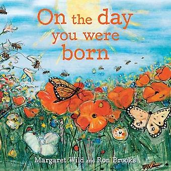 On the Day You Were Born by Margaret Wild - 9781911631293 Book