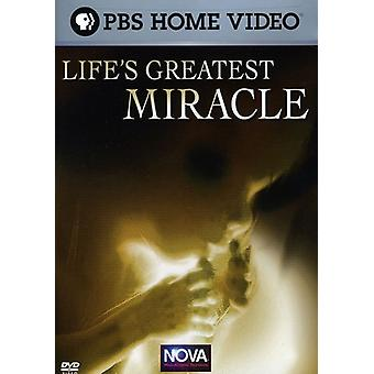 Nova - Nova: Life's Greatest Miracle [DVD] USA import