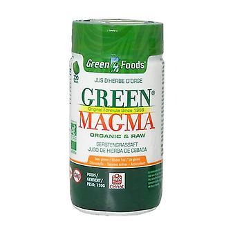 Green Magma Bio 320 tablets