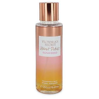 Victoria's Secret Velvet Petals Sunkissed Duft Nebel Spray von Victoria's Geheimnis 8,4 Oz Duft Nebel Spray