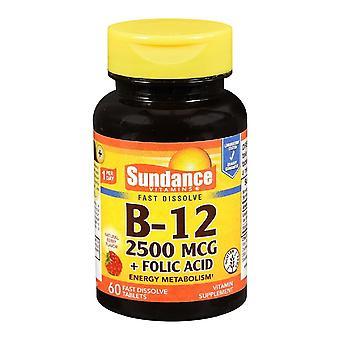 Sundance b-12, 2500 mcg + folic acid, fast dissolve tablets, 150 ea