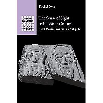 The Sense of Sight in Rabbinic Culture (Greek Culture in the Roman World)
