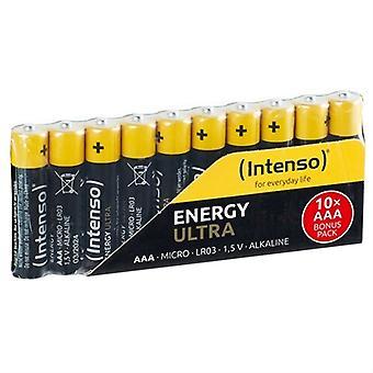 Batteries INTENSO 7501910