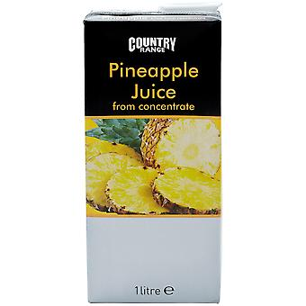 Country Range Pineapple Fruit Juice Cartons