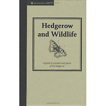 Hedgerow and Wildlife: Guide to Animals and Plants of the Hedgerow