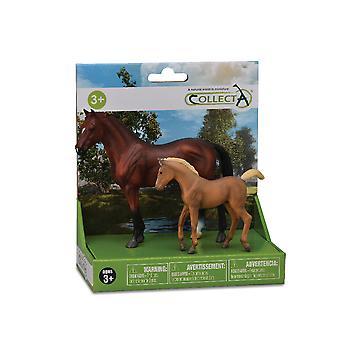 קולקטיטה-מודלים-ערכת חיי סוס (1)-2pcs