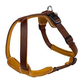 Hunter Neoprene Nylon Dog Harness