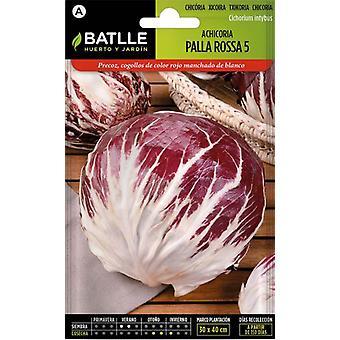 Batlle Palla Rossa 5 Red Chicory (Garden , Gardening , Seeds)