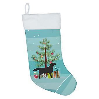 Musta Labrador Retriever hyvää joulua puu joulu sukat