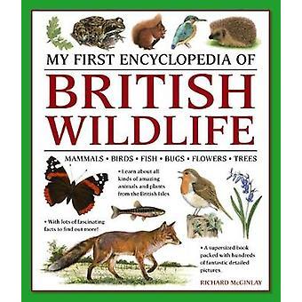 My First Encyclopedia of British Wildlife - Mammals - Birds - Fish - B