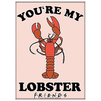 Friends You're My Lobster Magnet