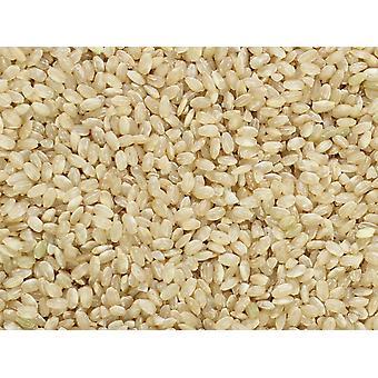 Lundberg Kortkornet Brun Ris Ikke-organisk-( 24lb )