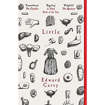 Little by  -Edward Carey - 9781910709535 Book