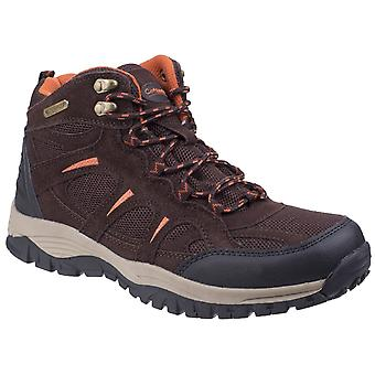 Cotswold heren's stowell lichtgewicht wandelschoen donkerbruin 26280