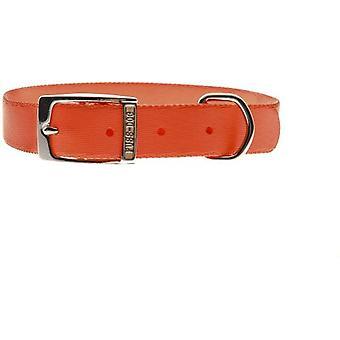 Ferribiella Ny Collar FDSpecial 10Mmx20-35Cm (Hunde , Für den Spaziergang , Halsbänder)