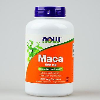 Now Maca 500 Mg 250 Pcs