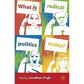 What Is Radical Politics Today?