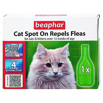 Beaphar kat plek op 4 Week vlo bescherming 1 x 0,8 ml