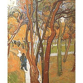 Folhas caindo, Vincent Van Gogh, 73,5 x 60,5 cm