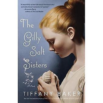 Het zout zusters van Gilly: Een roman