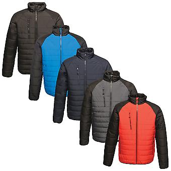 Regatta Mens Glacial Warmloft Insulated Water Repellent Jacket