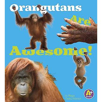 Orangutans Are Awesome! by Allan Morey - 9781491439265 Book