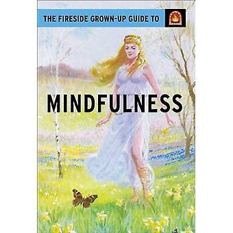 The Fireside Grown-Up Guide to Mindfulness by Jason Hazeley - Joel Mo