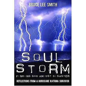 Soul Storm - Finding God Amidst Disaster by Bruce Lee Smith - 97815898